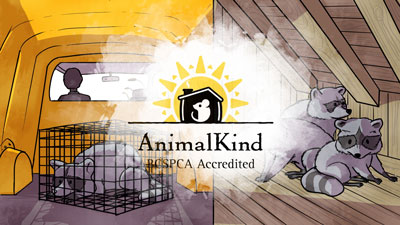 Animal Kind BCSPCA Accredited